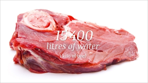 beef-water-hed-2013